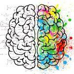 Виды сознания человека: реактивное и проактивное