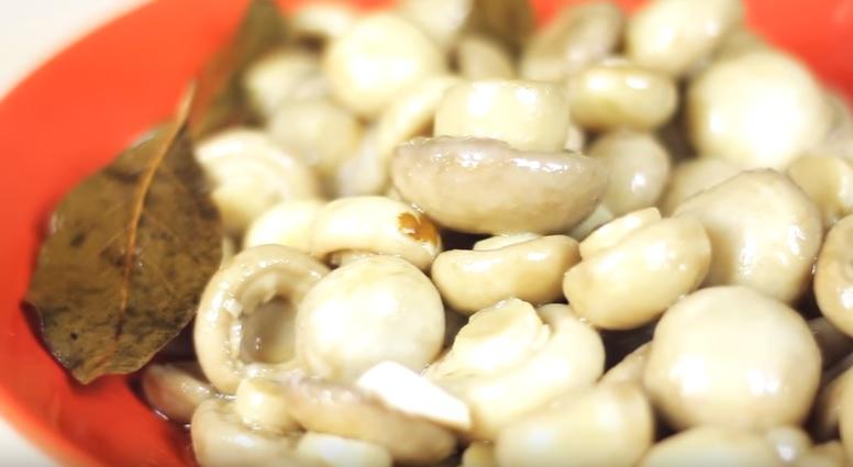 Как мариновать грибы шампиньоны в домашних условиях