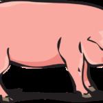 Свинья из бумаги своими руками: схемы и шаблоны для детей
