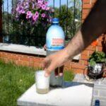 Квас из березового сока с изюмом в домашних условиях – 4 лучших рецепта