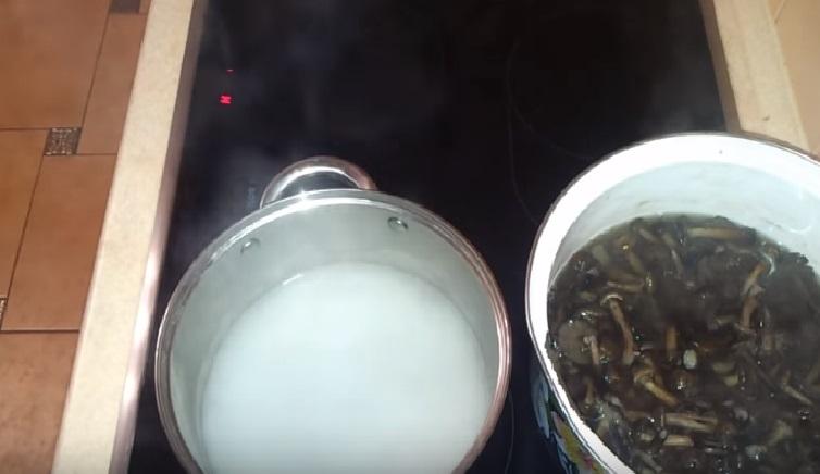 Маринованные опята на зиму — очень вкусные рецепты