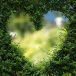 Чем можно пожертвовать ради любимого человека?