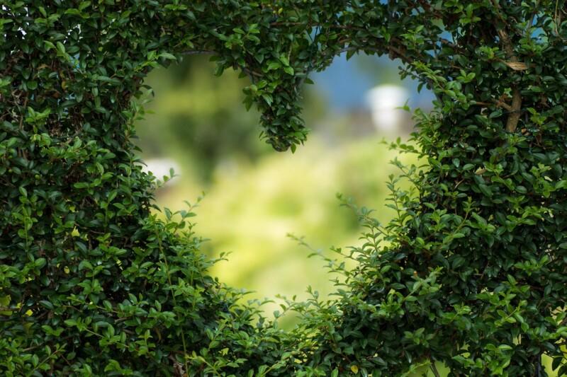 Чем можно пожертвовать ради любимого
